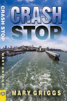 Crash Stop_Mary Griggs