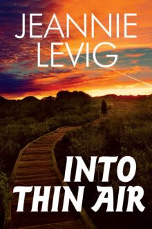 Into Thin Air_Jeannie Levig