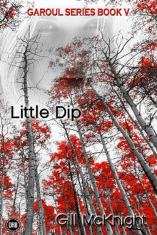 Little Dip_Gill McKnight